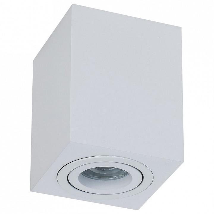 Накладной светильник Maytoni Alfa C017CL-01W